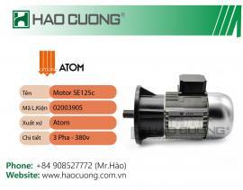 02003905 : Motor máy dập Atom VS925-S120EX-MF9.4